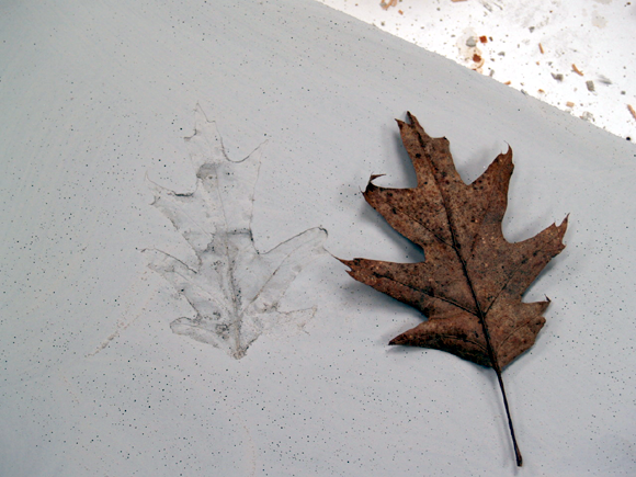 Oak Leaf Countertop
